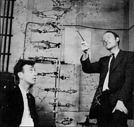 aWatson&Crick